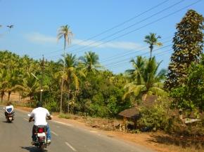 Je (re)viens du Sud / South Goa part2/2
