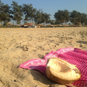 Have a Coconut / Plage Hotel Continental / Patnem / Goa Sud