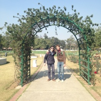 Les copains sous les roses - Chandigargh