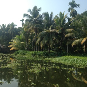 Palmeraie / Backwaters / Kerala
