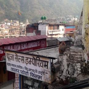 Aux pieds de l'Himalaya / Lansdowne &Rishikesh