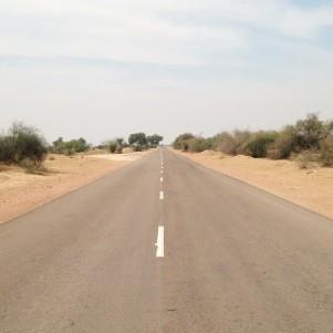 Route vers Jodhpur - Désert du Thar
