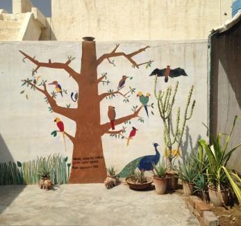 The tree sur la terasse - Bikaner