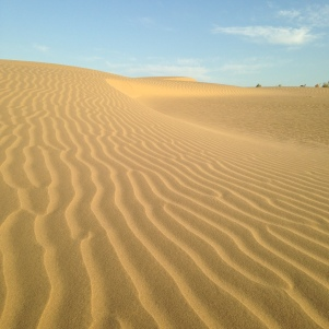 Un peu de sable, bienvenue dans le Désert du Thar