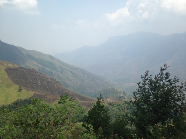 Top de la montagne - Munnar