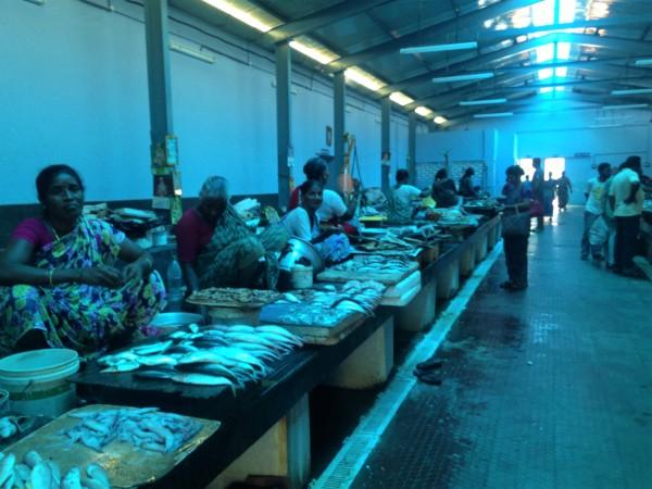 Halle au poisson - Pondi
