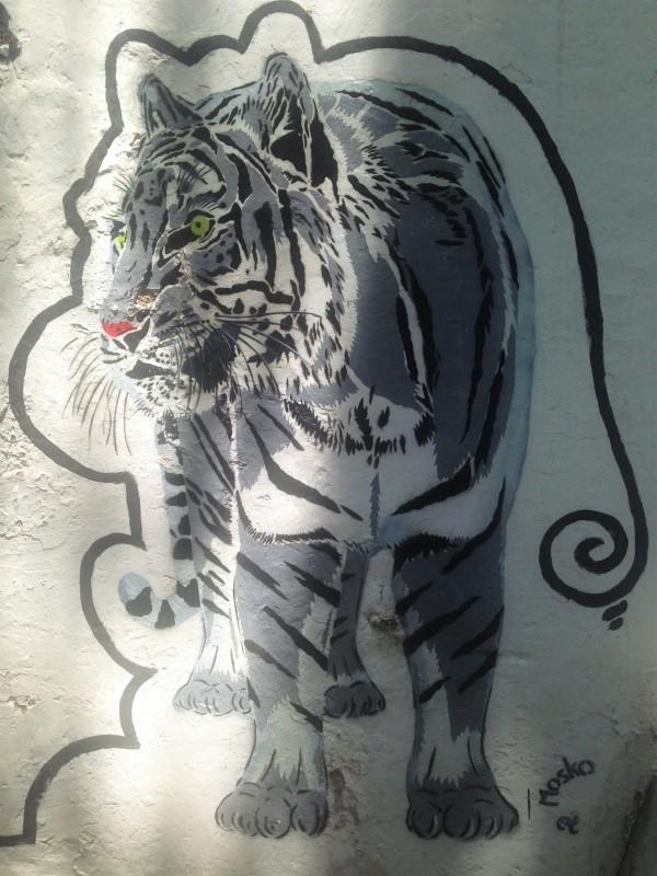 Tiger Grafitti - Café Gallery - Pondi